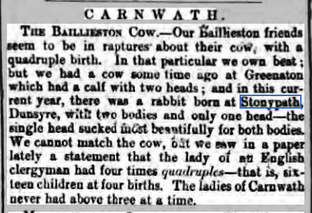 hamilton-advertiser-sat-2-april-1870-stonypath-rabbit
